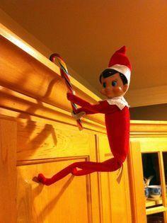 Elf on a Shelf - Climbing
