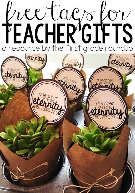 Teacher Appreciation Gift and FREEBIE | How to make these quick and easy succulent plant gives for less than $3 each!