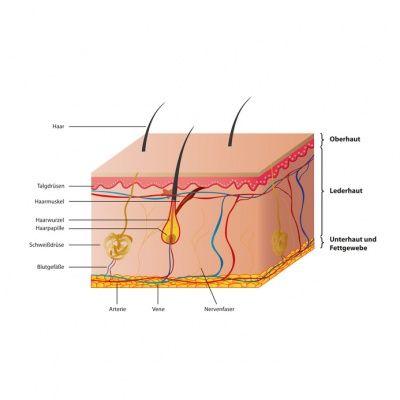 Hyperkeratose - Ursache, Symptome, Verlauf, Diagnose, Behandlung, Therapie, Vorbeugung