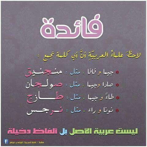 كلمات في اللغة العربية ليست عربية الأصل Learn Arabic Language Words Beautiful Arabic Words