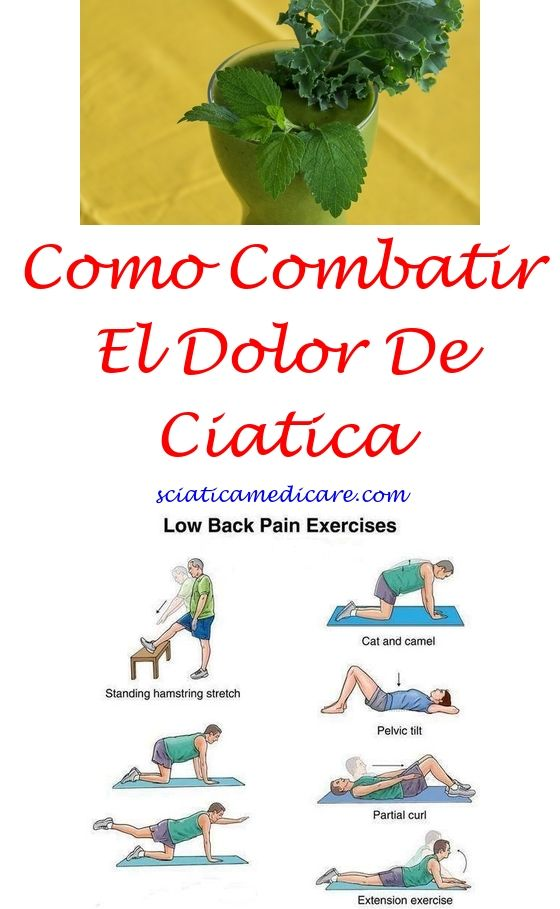 Que Es La Ciatica En El Cuerpo Humano | Nervio ciatico, Ciatica ...