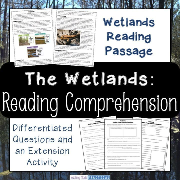 Wetlands (Swamps and Marshes) Reading Comprehension and