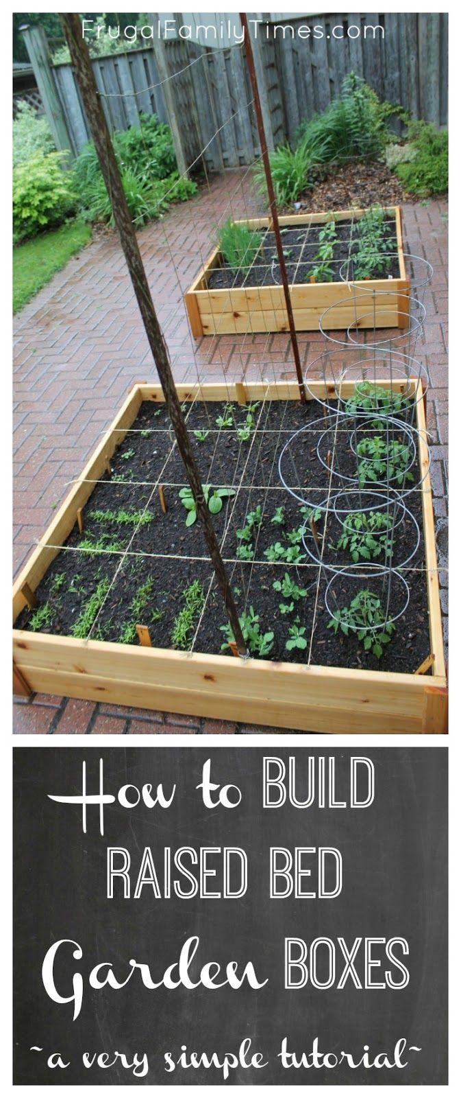 How To Build Raised Garden Boxes Diy Grow Vegetables Anywhere Garden Boxes Raised Building Raised Garden Beds Garden Boxes Diy