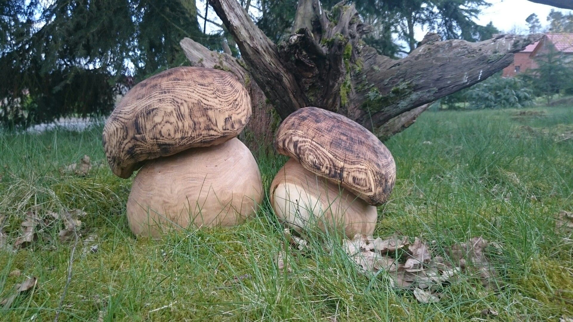 kettensägenkunst pilze | carving fred | pinterest