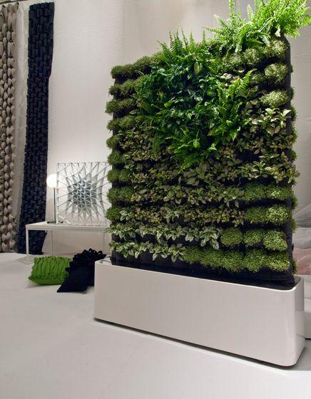 Herbal architecture separadores de ambiente divisi n y for Separadores de jardin