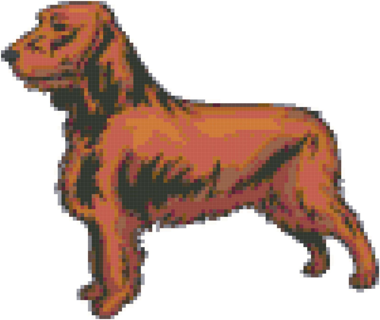 Field Spaniel Dog Breed Cross Stitch Pattern And Tutorial