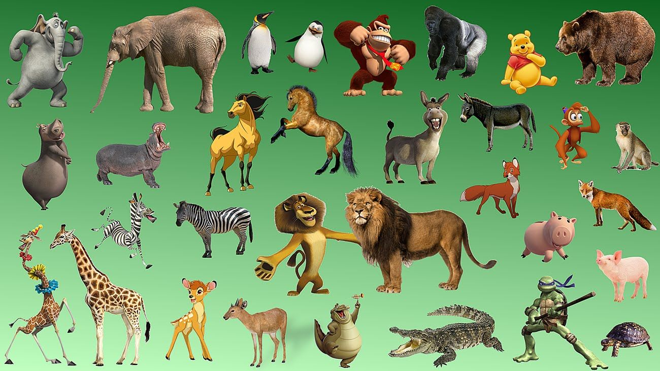 Learning Wild Animals Names and Sounds for kids Real and