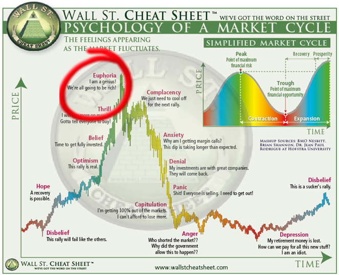 Investors In Wonderland Euphoria Psychology Financial Markets