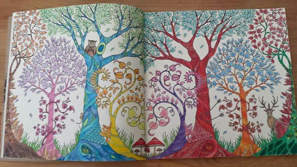 Enchanted forest by me x Enchanted forest coloring