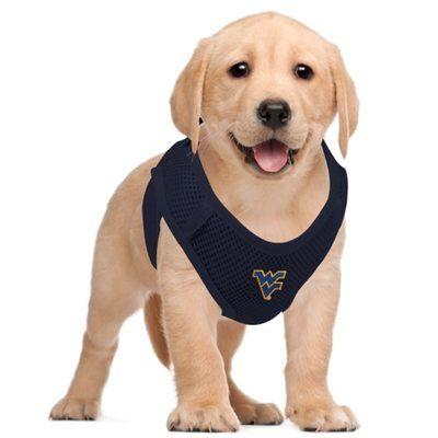 Wvu Mountaineers Pet Vest Harness Navy Blue Nfl Fan Gear Pet