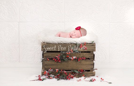 Instant Download Photography Prop DIGITAL BACKDROP for Photographers - Christmas Holiday Holly Crate - Digital Background #backdropsforphotographs