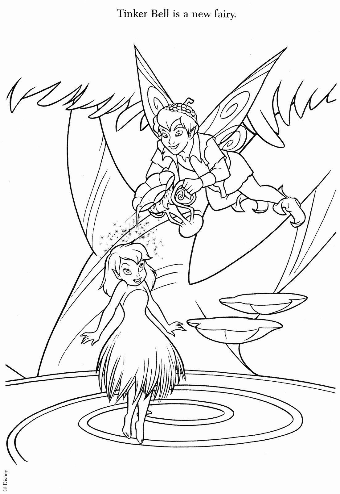 Disney Fairy Coloring Pages Luxury Desenhos Para Colorir Sininho Parte 4 Coloring Colorir De Fairy Coloring Pages Tinkerbell Coloring Pages Fairy Coloring [ 1600 x 1103 Pixel ]