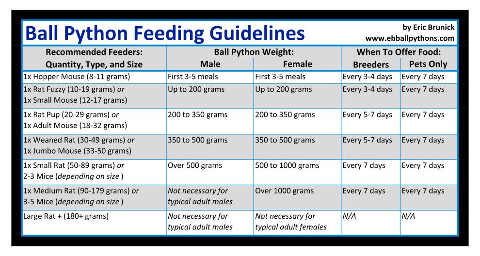 Ball Python Feeding Tips (With images) | Ball python care ...