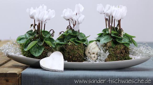 dekorieren mit alpenveilchen flowers pinterest christmas decorations christmas und flowers. Black Bedroom Furniture Sets. Home Design Ideas