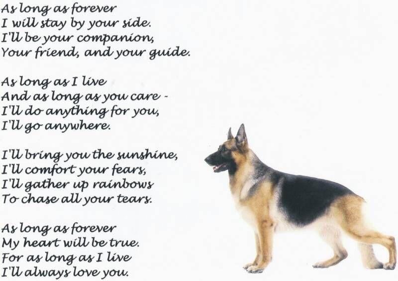 Unconditional Love Dog Love Puppy Love German Shepherd