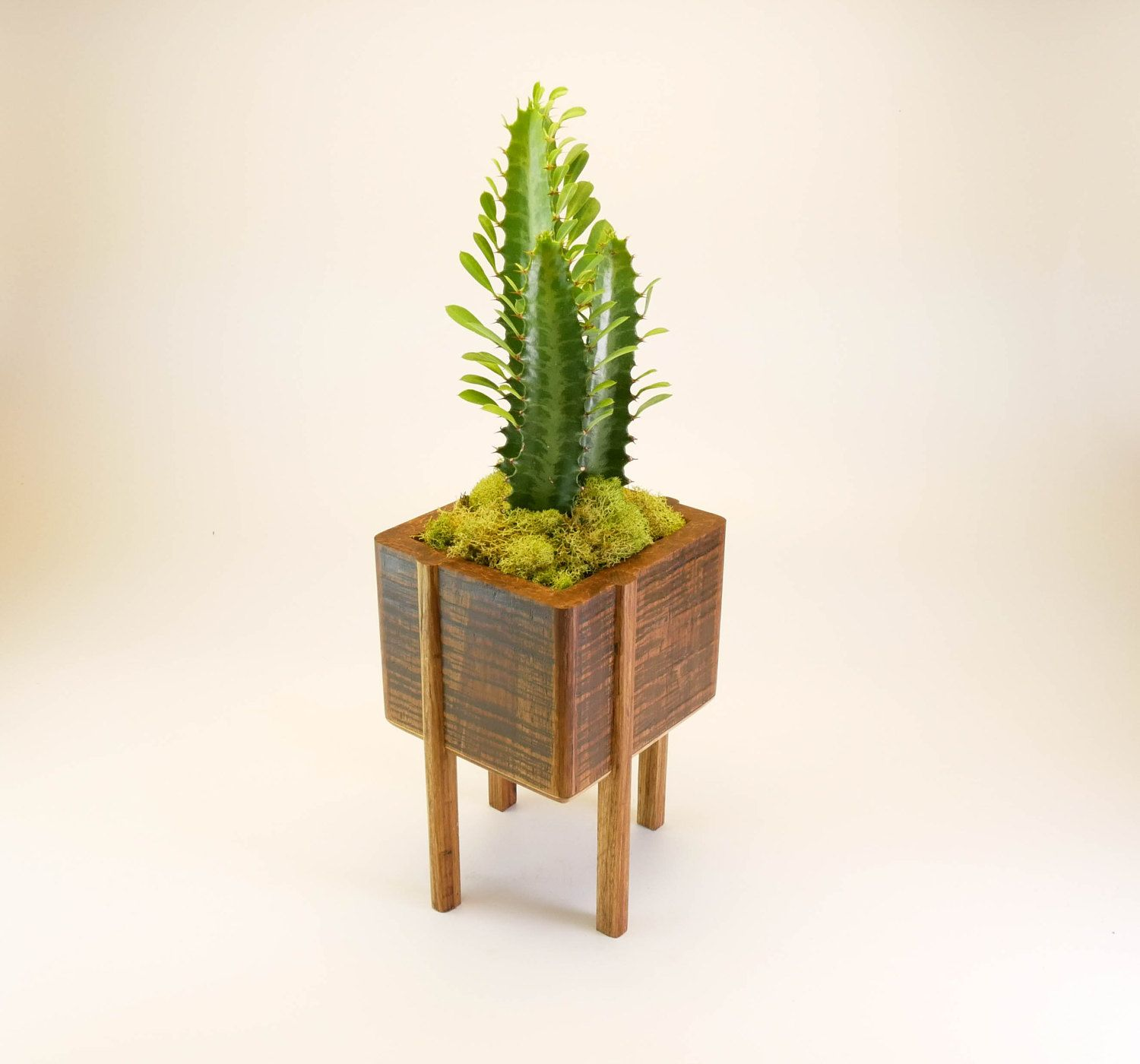 Bamboo Planter With Legs Planter With Stand Succulent Succulent