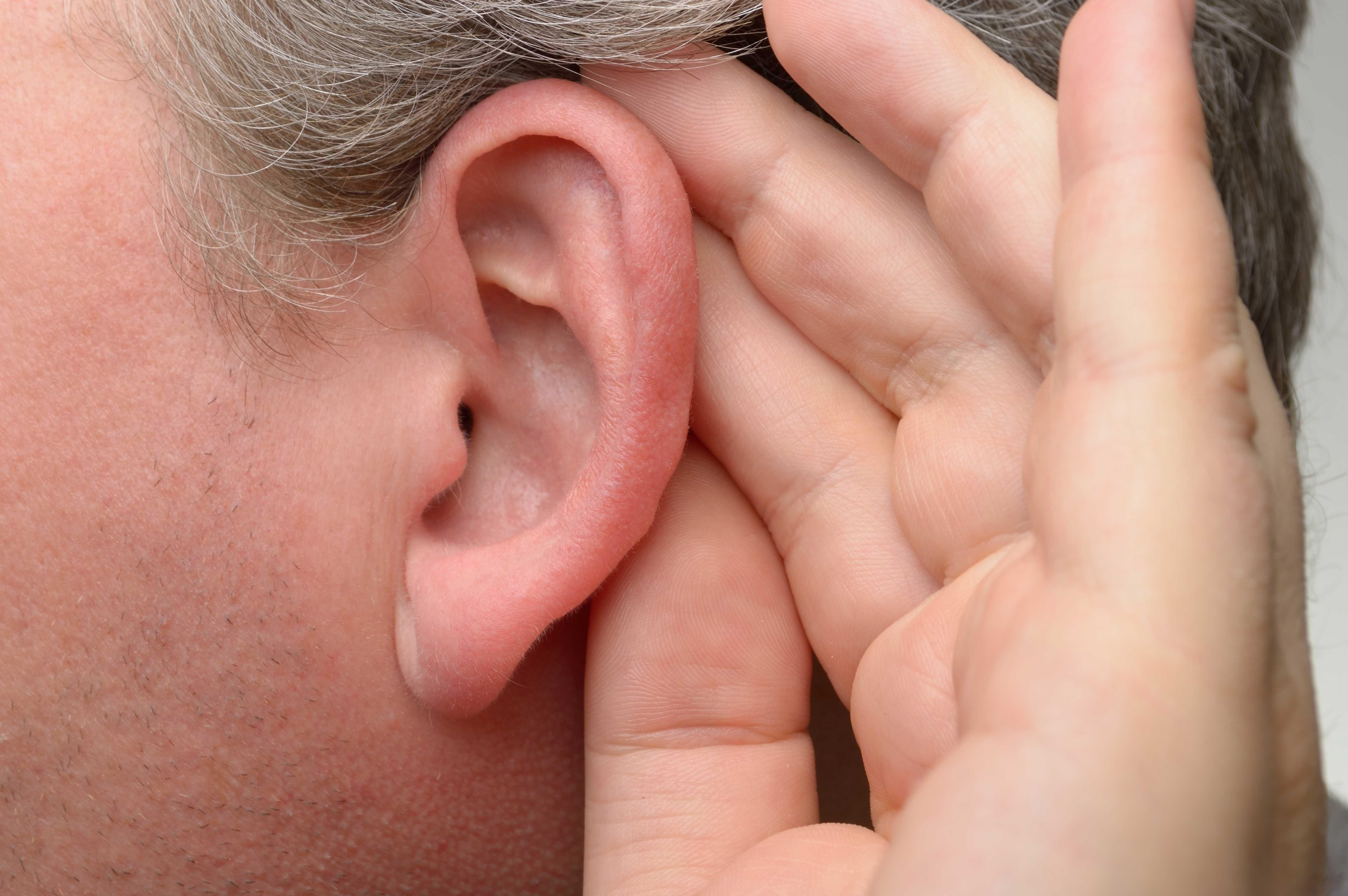 Ein Ohr am Unterarm ist das vielleicht verrückteste Wearable der Welt | WIRED Germany