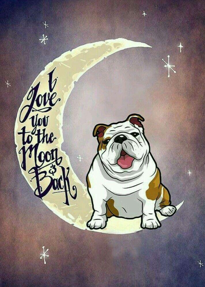 Dogshirtssayings Bulldog Tattoo Bulldog Drawing Bulldog