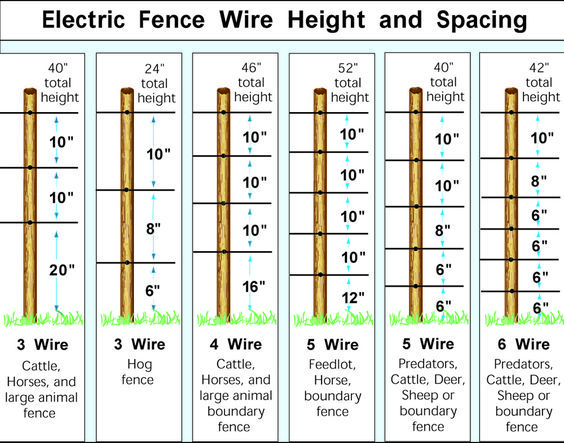 Electric Fence Wire Heights More | Goats | Pinterest | Goats, Fences ...