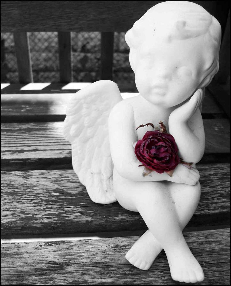 """War eben im Keller....und mein kleiner Engel und ich dachten uns """"Hoffnung """"= Eine schöne Erinnerung an die Zukunft.""""   Was just in the basement and my little angel and I thought """"hope """"= A beautiful memory of the future."""""""