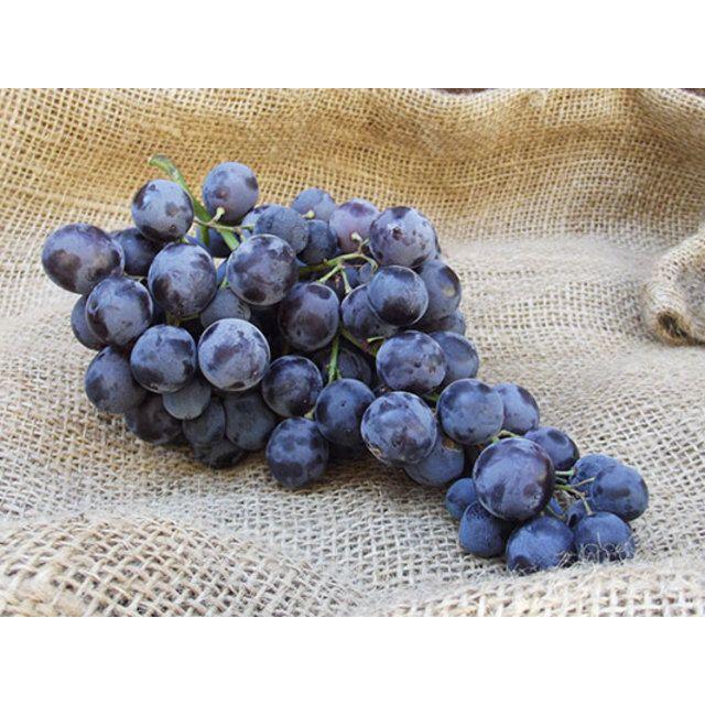 @Natoora Ltd black muscat grapes available at Ocado