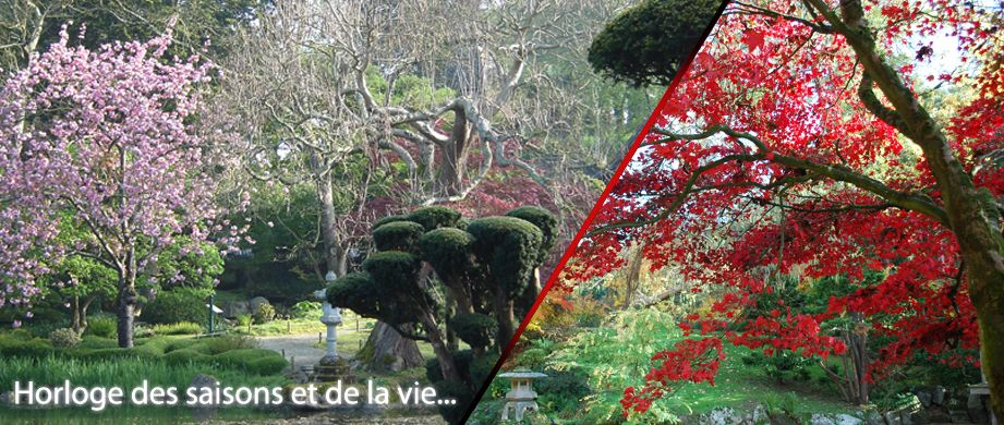 Parc Oriental de Maulevrier : Pont japonais , parc de Maulévrier ...
