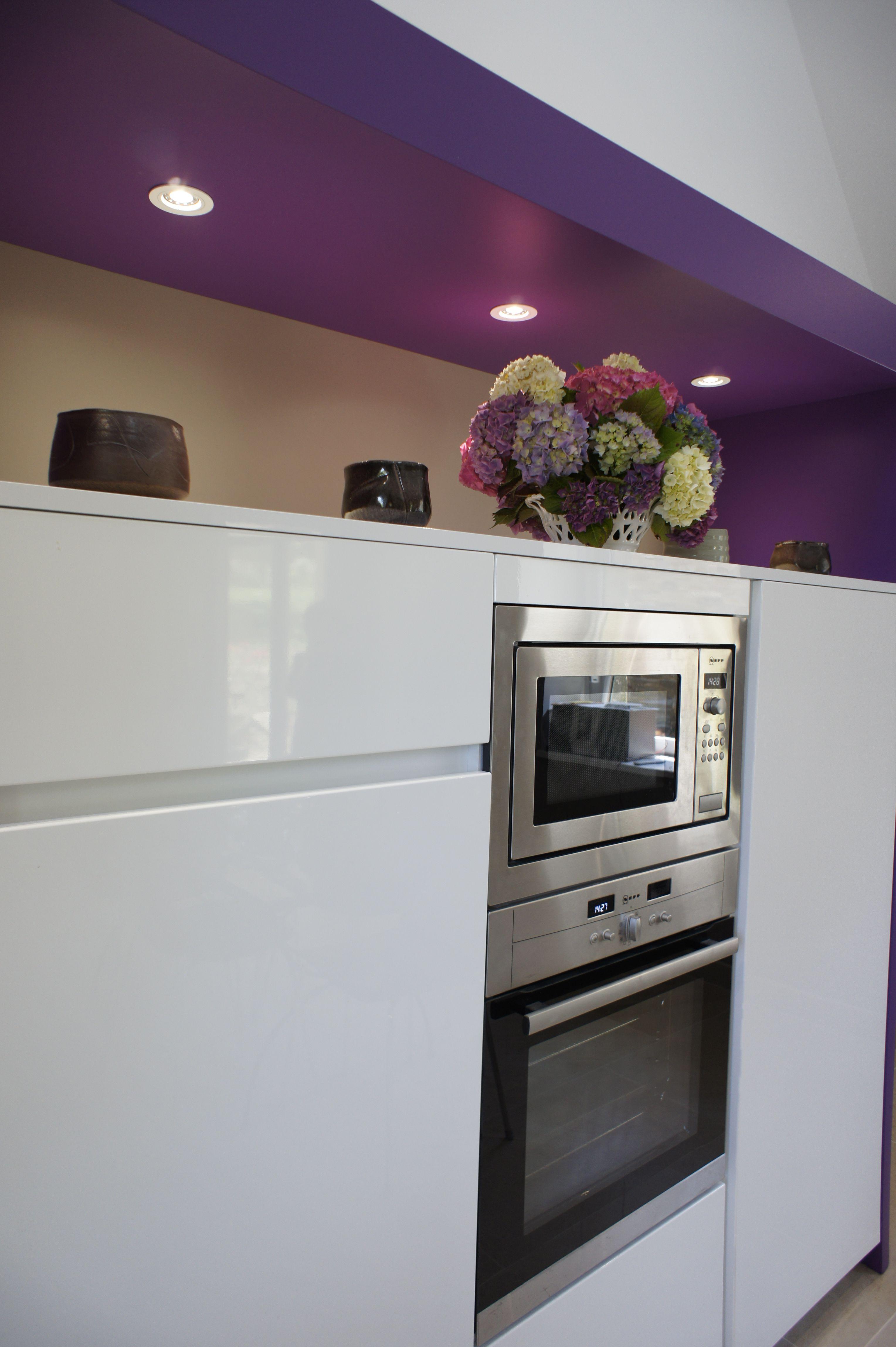 Colonne Pour Four Et Micro Onde zone technique avec lave-vaisselle surélevé, four et micro