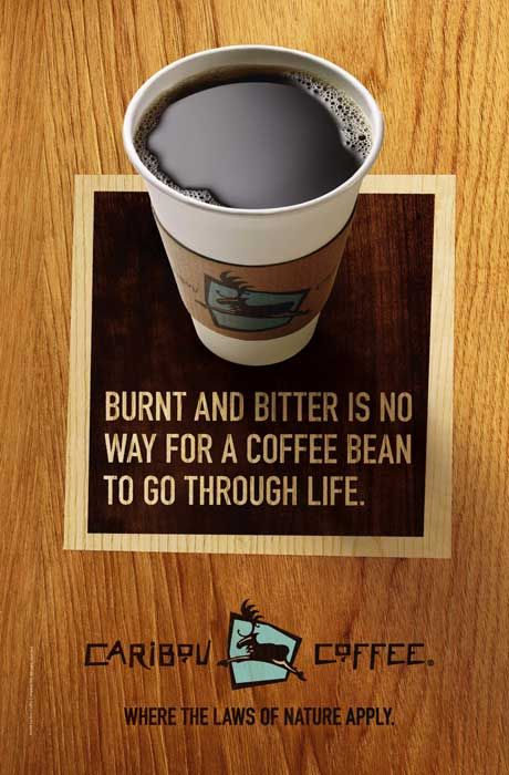 Caribou Coffee: Case Study - Essay Example