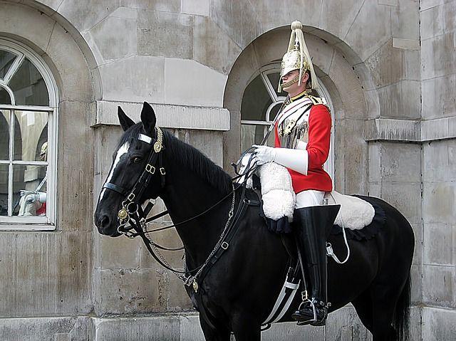 Cheval, Garde, Londres, Anglais - Image gratuite sur Pixabay