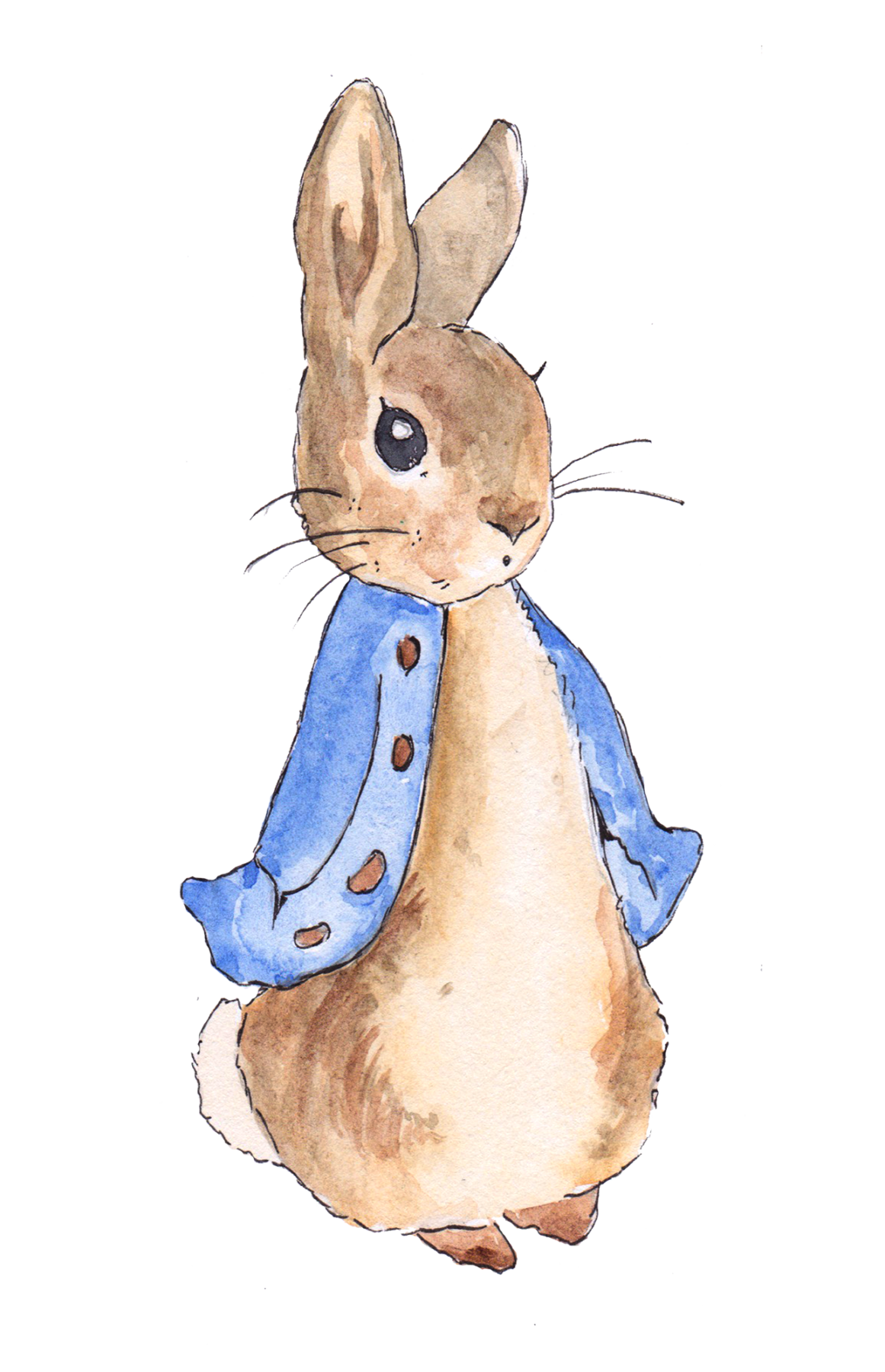 Image Result For Peter Rabbit Baby Shower Ideas Peter