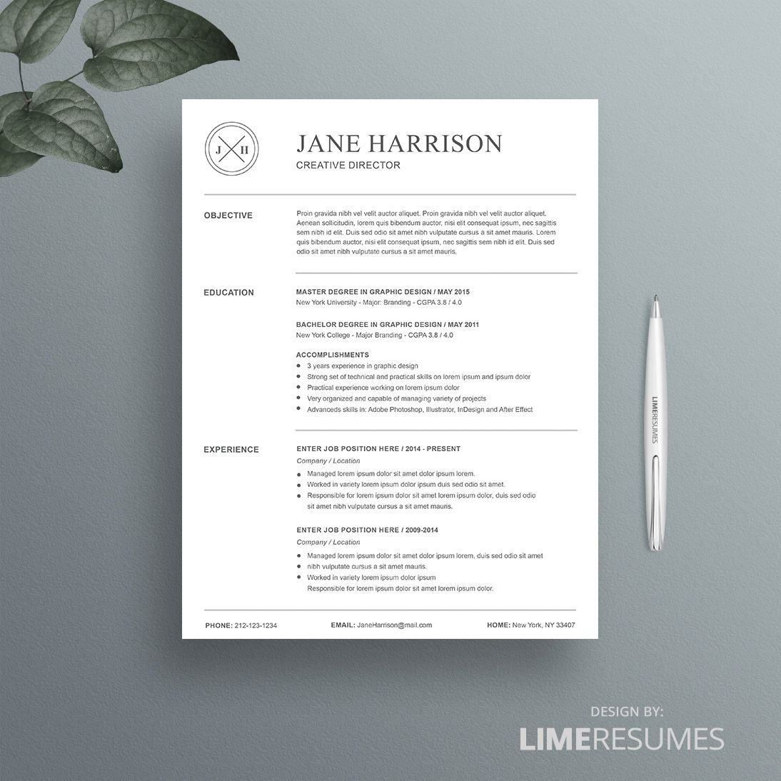 Resume Template   Microsoft Word Professional Resume Template