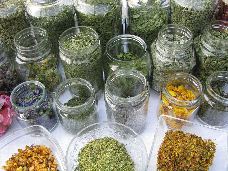 legjobb gyógynövények a zsírégetéshez