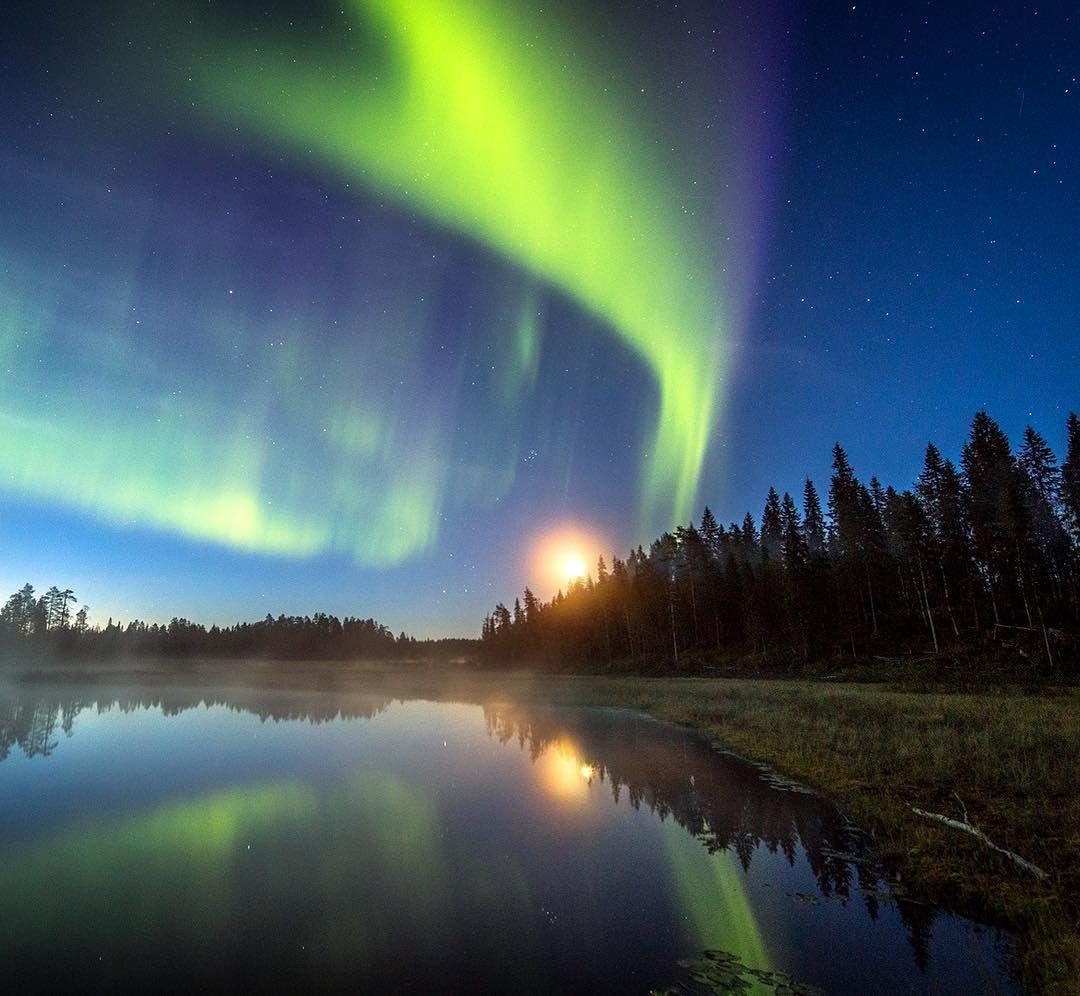 Auroras In August In Rovaniemi Finnish Lapland Photo By Jani