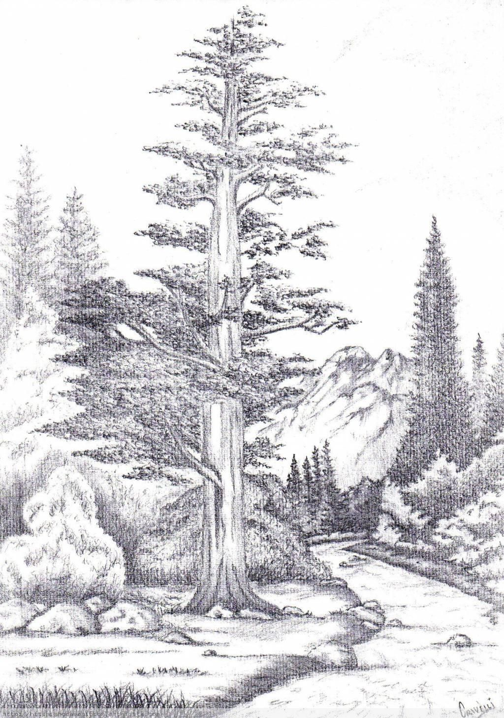 Dibujo Y Pintura Dibujos A Lapiz Carboncillo Paisaje Paisajes Dibujos Dibujos Para Pintar Paisajes