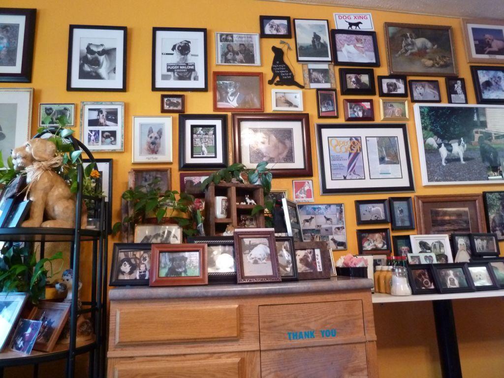 Beach Dog Cafe, Lincoln City Restaurant Reviews, Phone