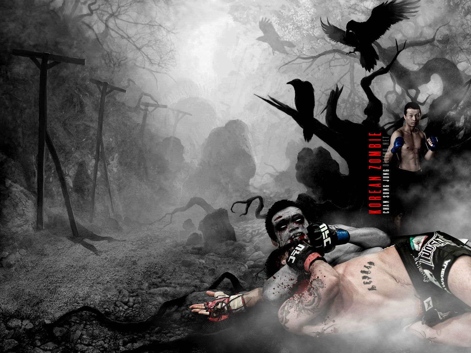 Behold The Korean Zombie Mma Ufc163 Zombie Wallpaper Ufc Mma