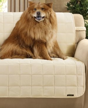 Phenomenal Velvet Deluxe Pet Armless Slipcover Collection With Sanitize Download Free Architecture Designs Scobabritishbridgeorg