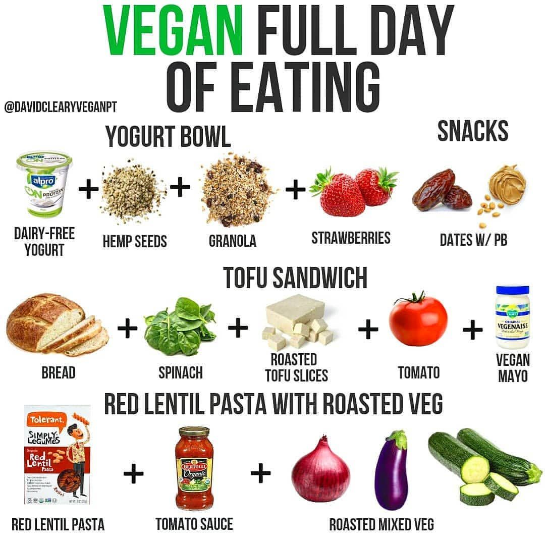 what is a full vegan diet