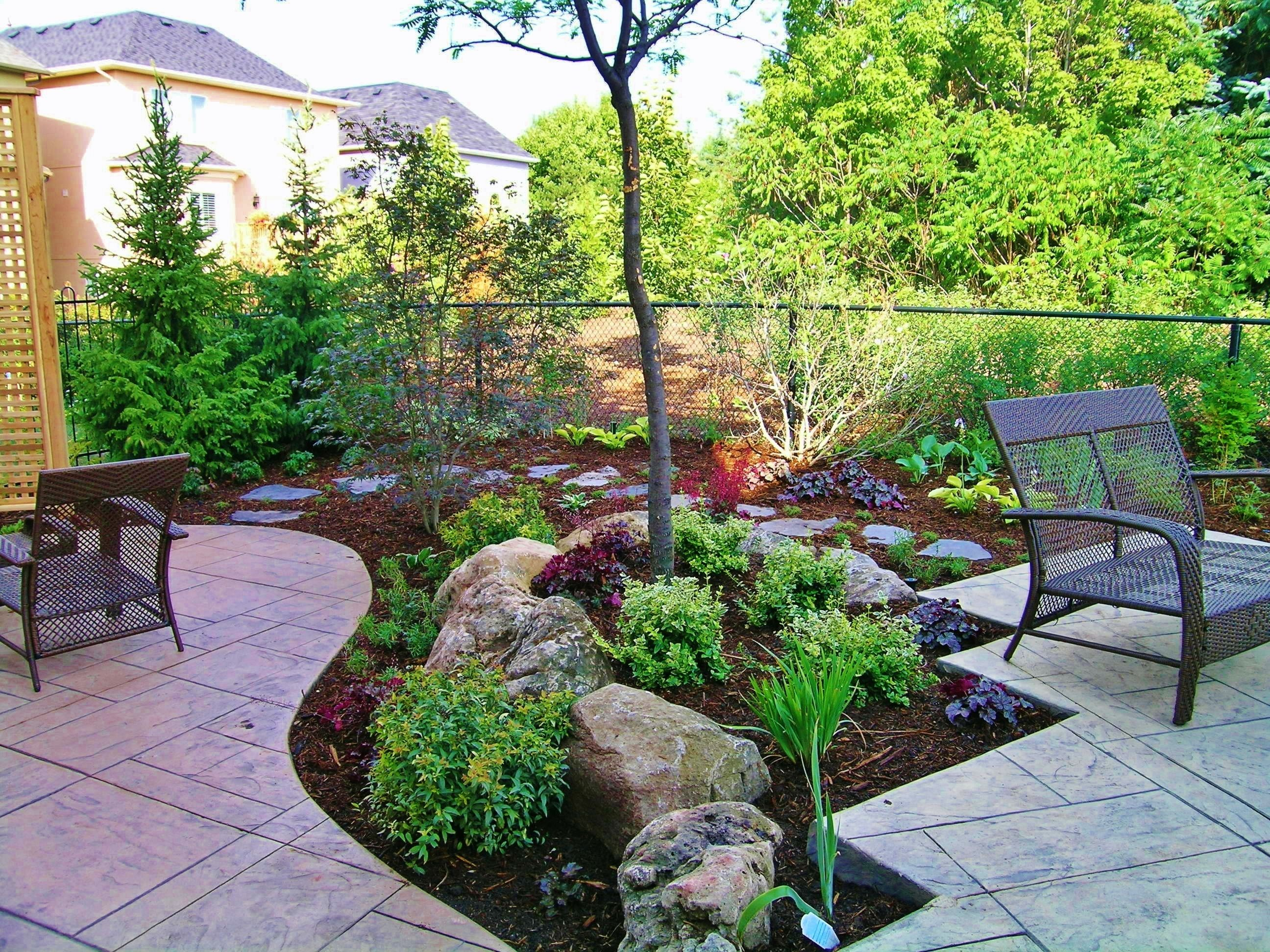 Backyard without grass garten landscape designs and grasses for Outside landscaping ideas