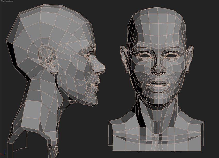 automob 3d anatomy tutorial - 847×612