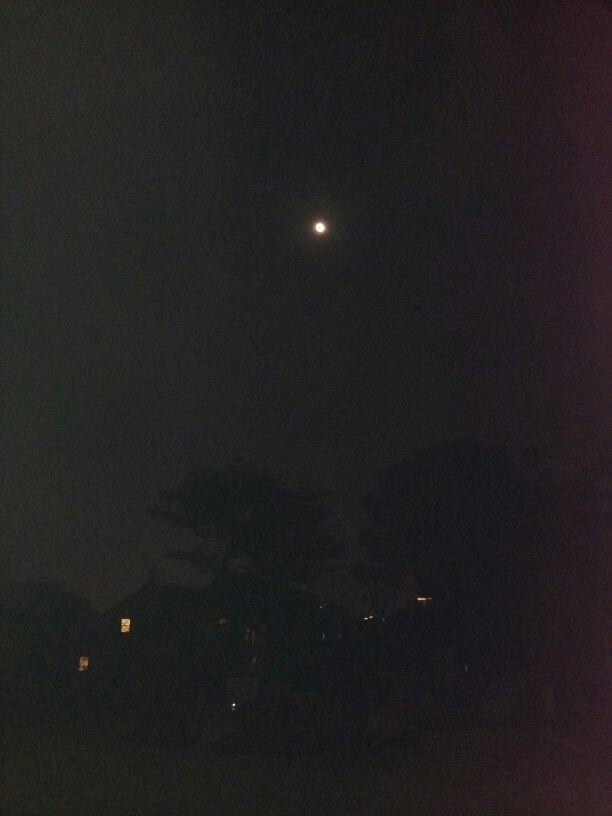 어느 날의 달