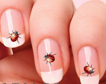 LADY BUGS Nail Decal Lady bird Nail Art ladybug NAILTHINS