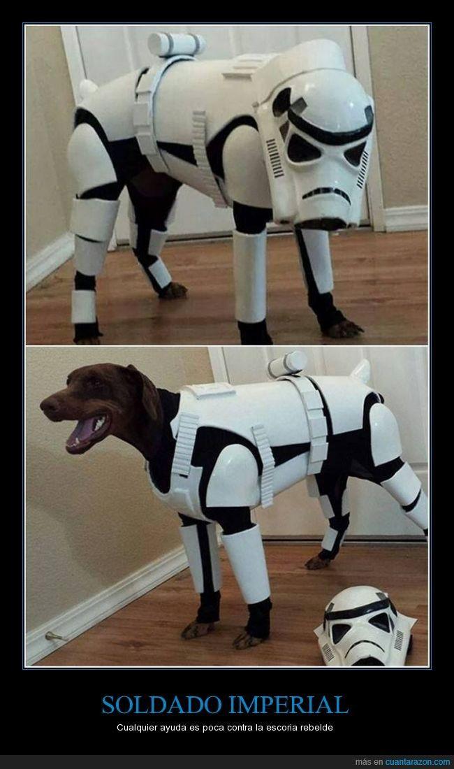 Soldado Imperial Dog Halloween Costumes Pet Halloween Costumes Dog Costumes