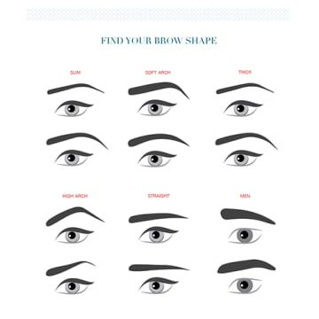 16 eyebrow diagrams that will explain everything to you Eye Shapes and Makeup