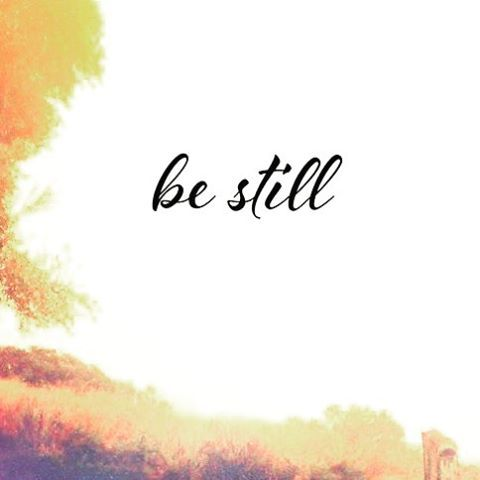 """""""Be still and know (recognize, understand) that I am God. I will be exalted among the nations! I will be exalted in the earth.""""-Psalm 46:10  I have this! @god_has_this_"""