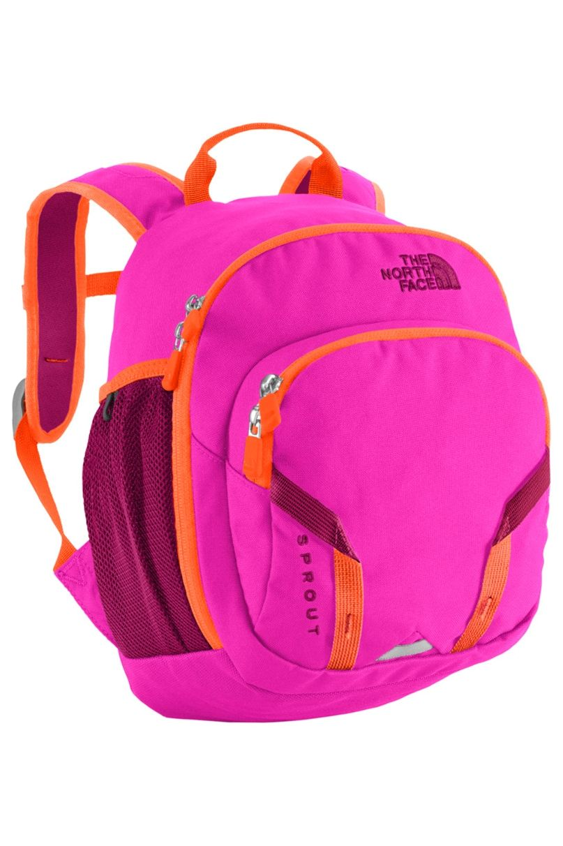 168fccd24 The North Face Sprout Backpack 10L