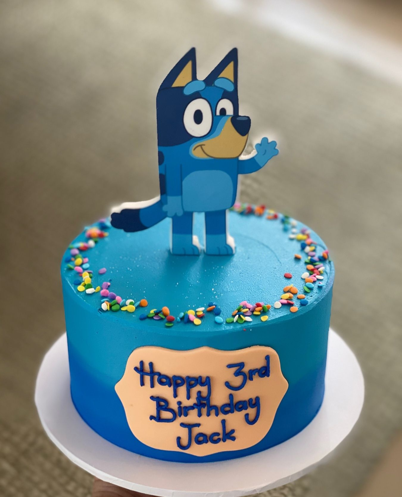 Bluey Cake in 2020 Cake, Novelty cakes, Cake creations