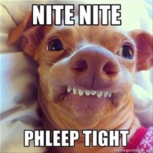Goodnight, welterusten
