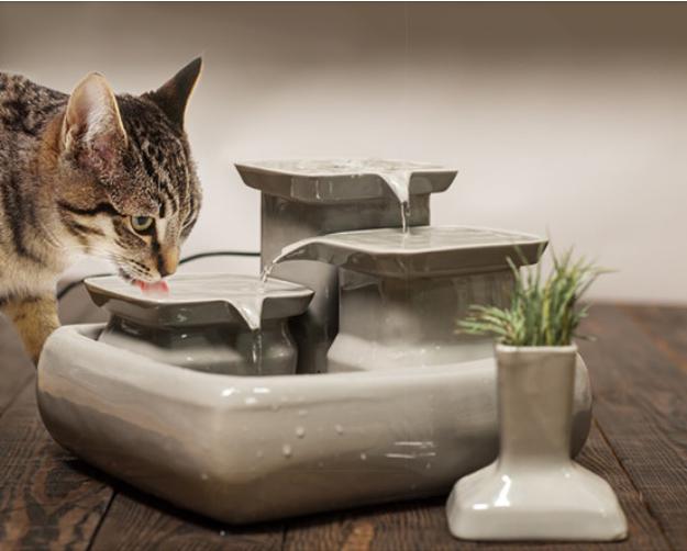 Trinkbrunnen für Katzen - 5,5 Liter aus Keramik #katzengeburtstag