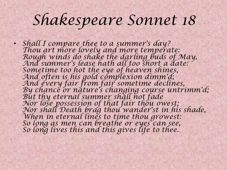 What do the sonnets tell us about shakespeare